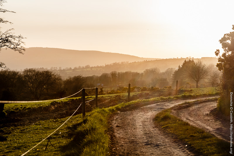 Dirt Road and Sunset