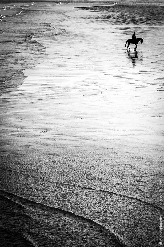 Horse on Inchydoney Beach
