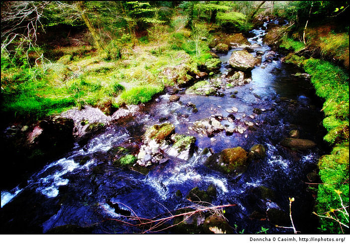 glengarriff-stream