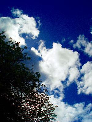 photoblog-20040423