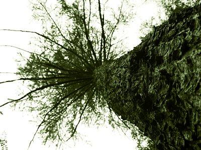 photoblog-20040930
