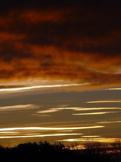 photoblog-20041124