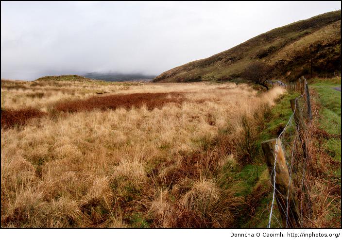 Bantry Field