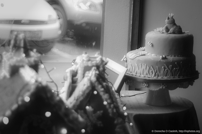 Dungarvan Cakes