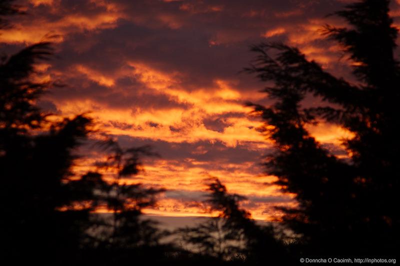 the fiery sky