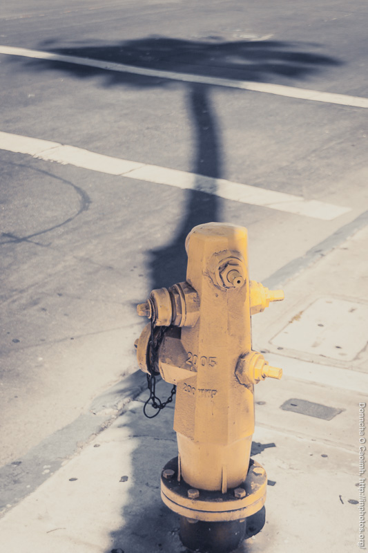 hydrant-in-shadow