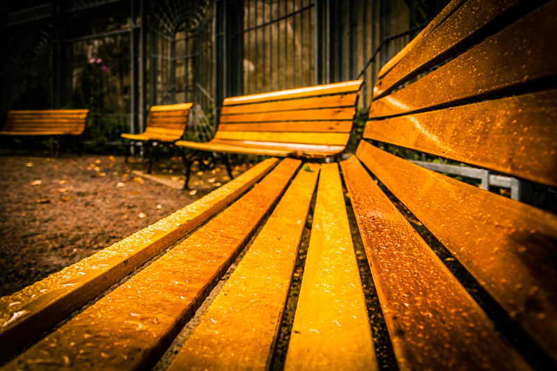 public-bench-one