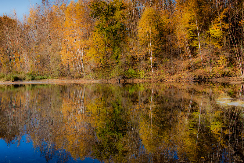 reflection-of-autumn
