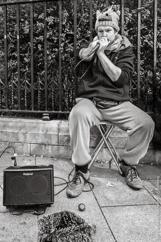 harmonica-busker