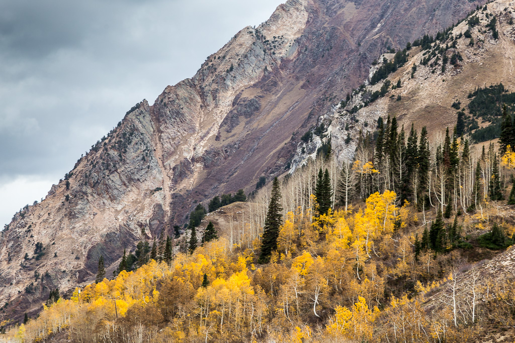 aspen-on-the-mountains