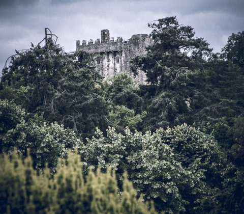 blarney-castle-in-the-trees