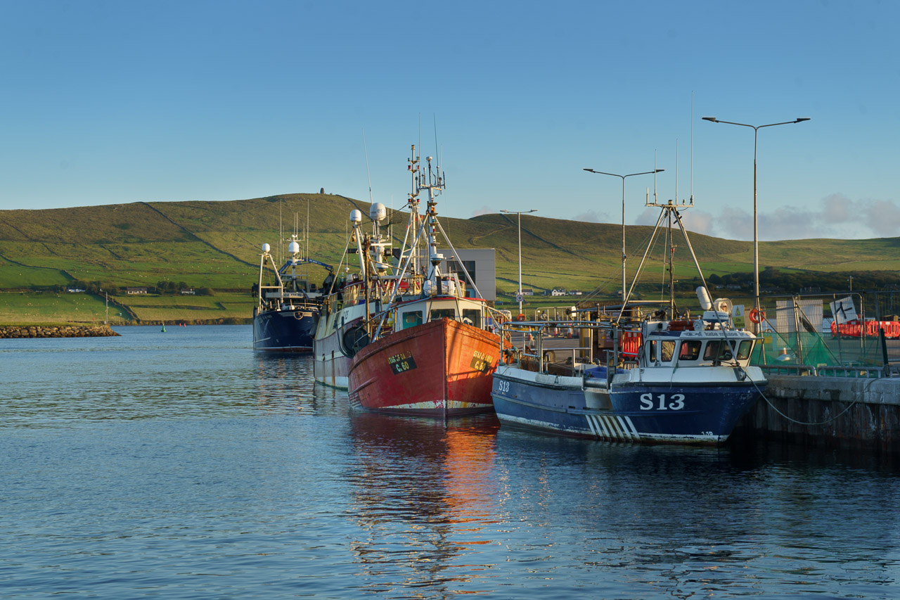Boats in Dingle Harbour