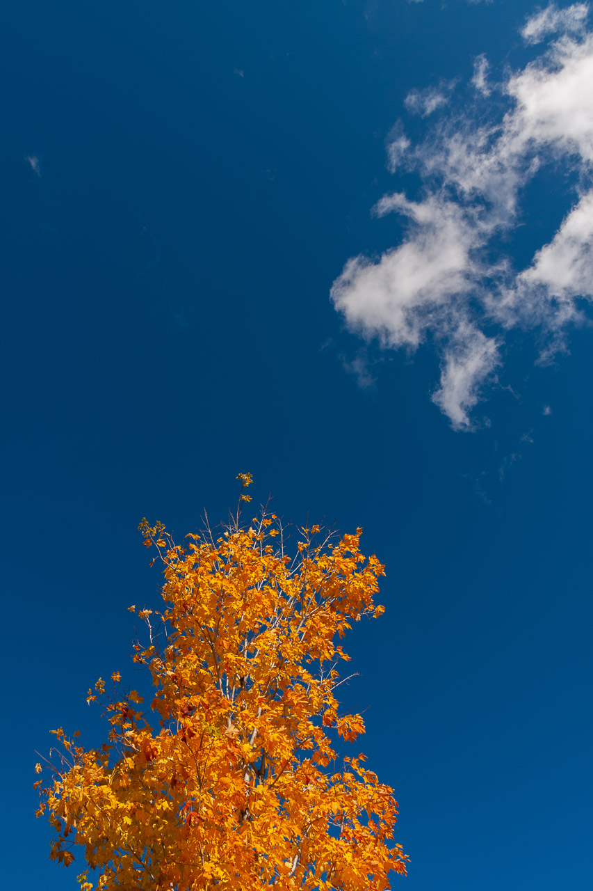 Blue Skies and Autumn Colours