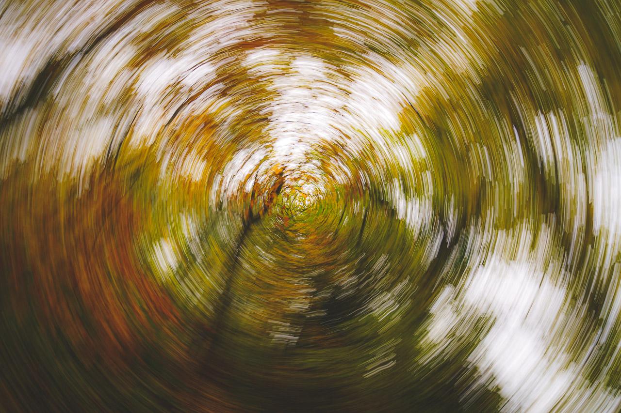 Autumn Spinning Around