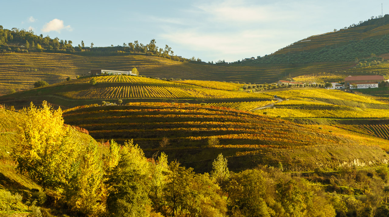 The Hills of The Douro Valley