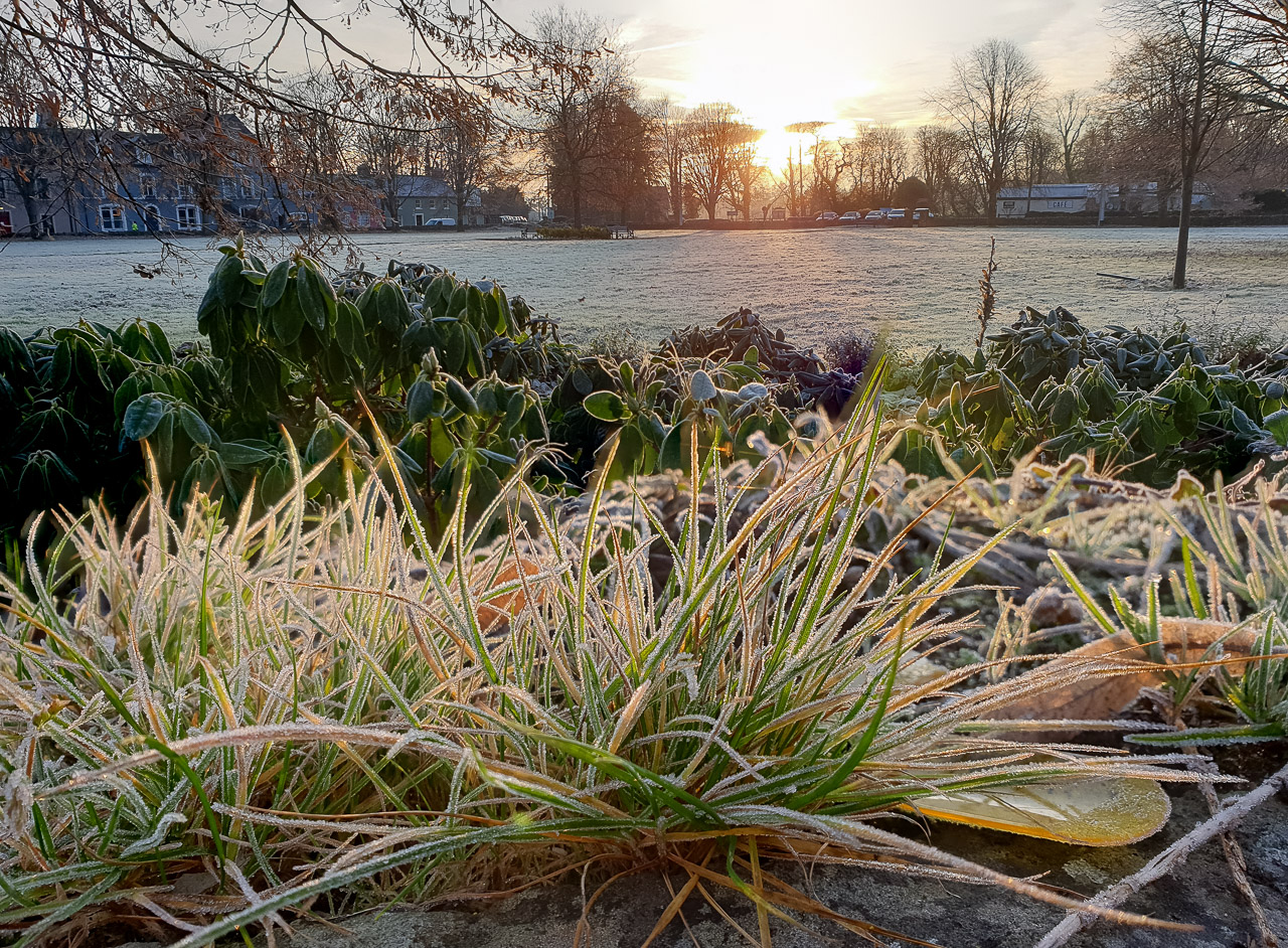 Frosty Morning in Blarney