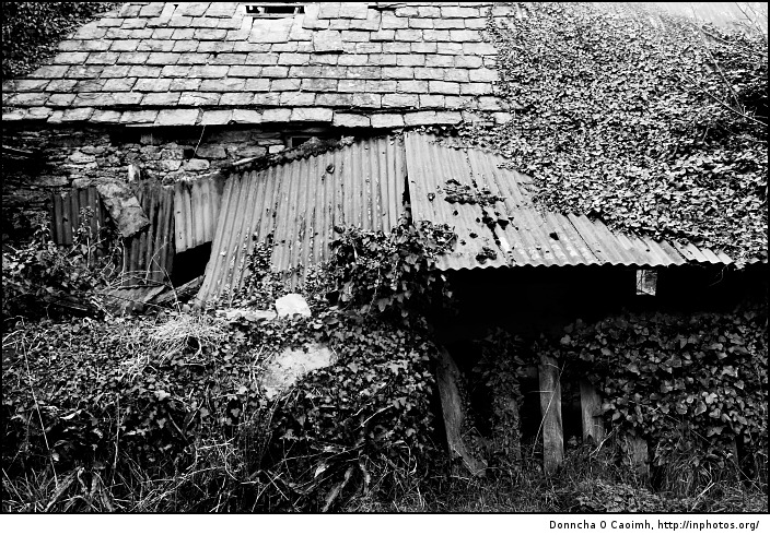 Old farm building in ruins